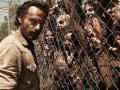 Netflix contará con las tres primeras temporadas de The Walking Dead a partir del 25 de agosto