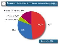 paraguay tv paga market share 2014