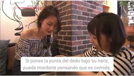 NHK World TV lanza a gran escala de VOD multilingüe