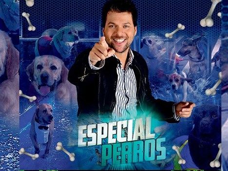 Kuarzo: Los Perros (mi amigo fiel) lidera en Telefuturo Paraguay